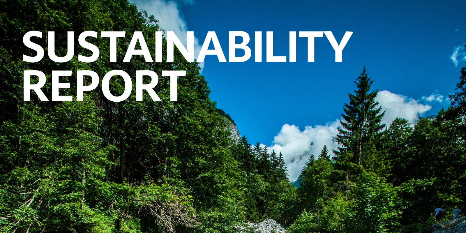 Sustainability Report_LL